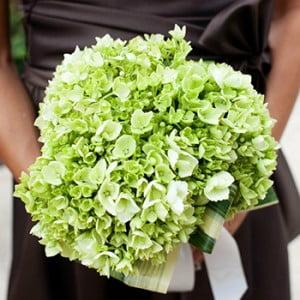 Green Hydrangia Bouquet - Boyton Wedding